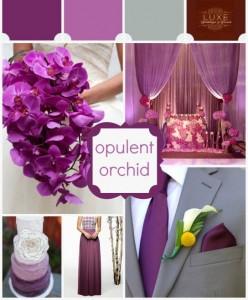 Tinute nunta Radiant Orchid